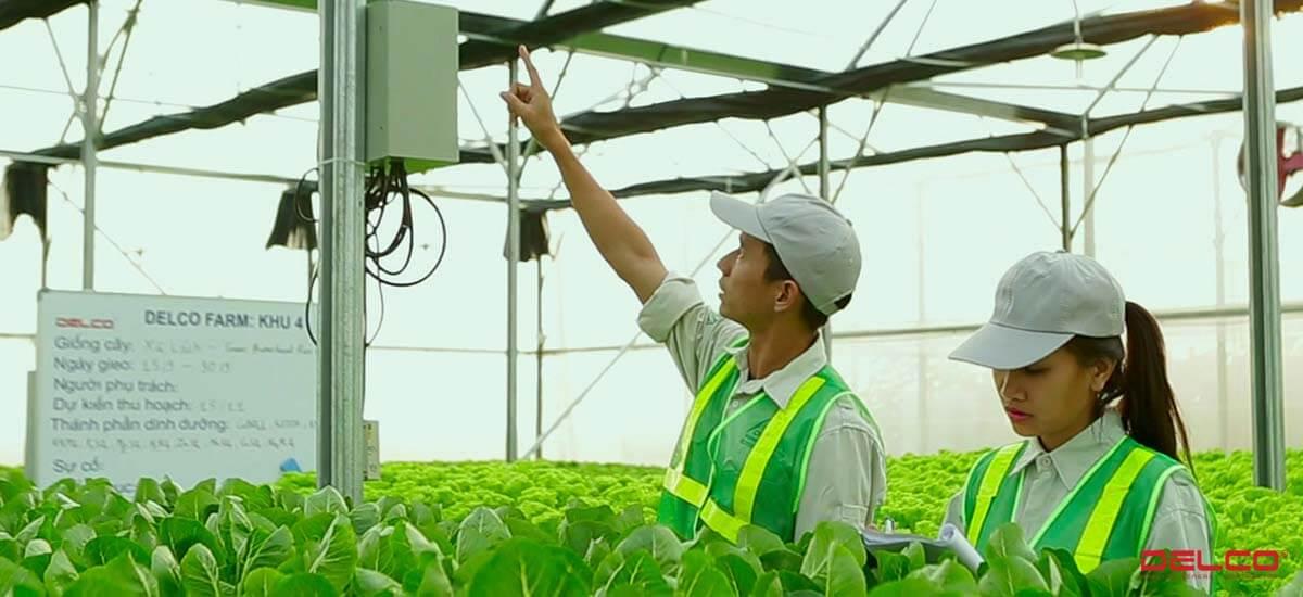 Xây dựng trang trại thông minh Delco ứng dụng công nghệ cao
