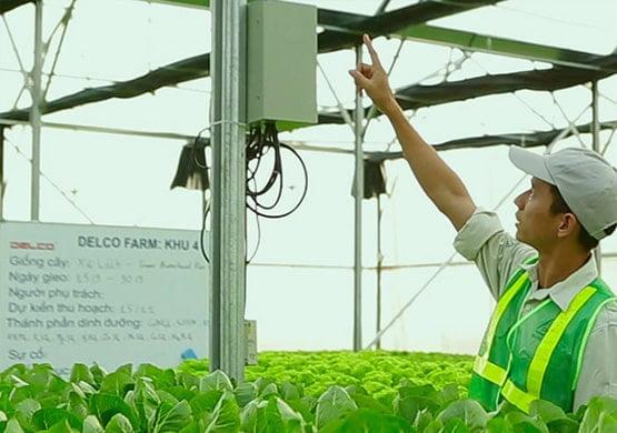 Tư vấn thiết kế hệ thống trang trại thông minh